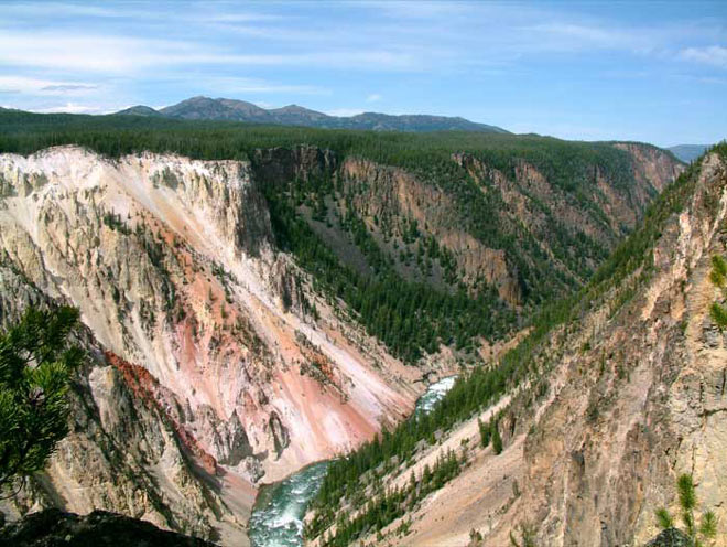 Canyon . Yellowstone