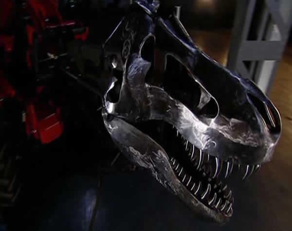 Tête biomécanique d'un Tyrannosaure