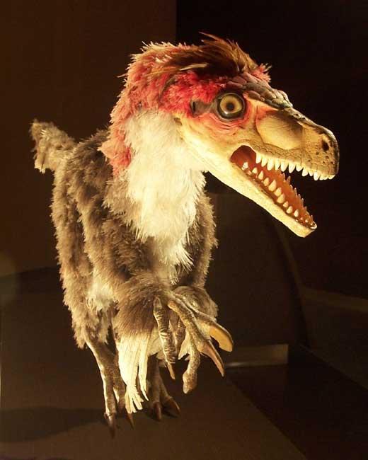velociraptor_cc06.jpg
