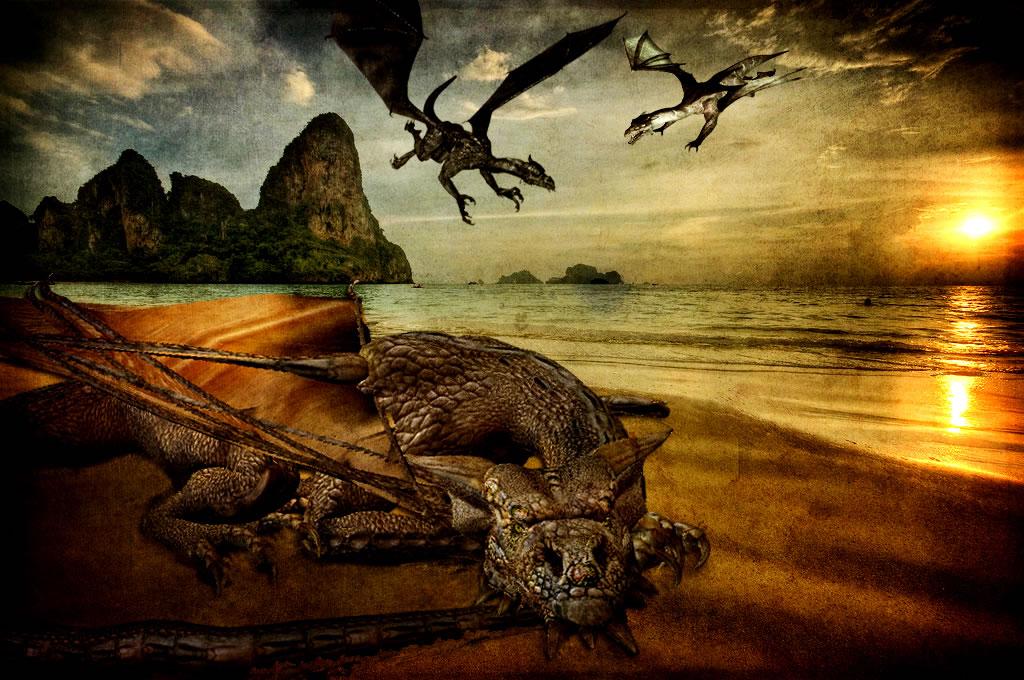 http://www.dinosoria.com/dragon-1/images/dragon-2_jpg.jpg