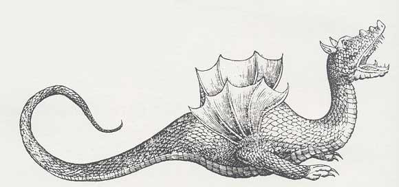 Dragon . Dessin du 16e siecle