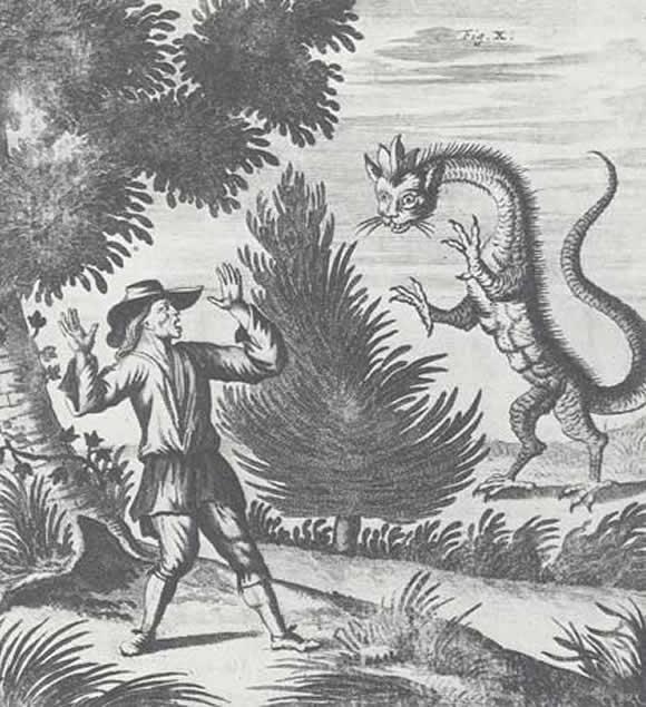 Dessin d'un dragon en 1660