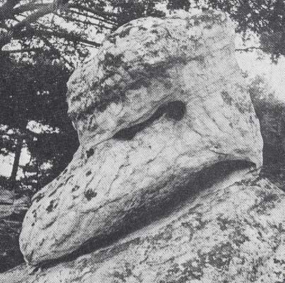 Rocher de Fontainebleau