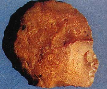 Outil en forme de tête