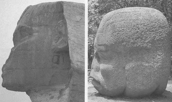 Comparatif de la tête du Sphinx de Gizeh et d'une tête olmèque