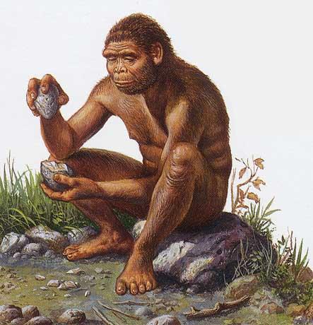 http://www.dinosoria.com/hominides/homo_habilis_003.jpg