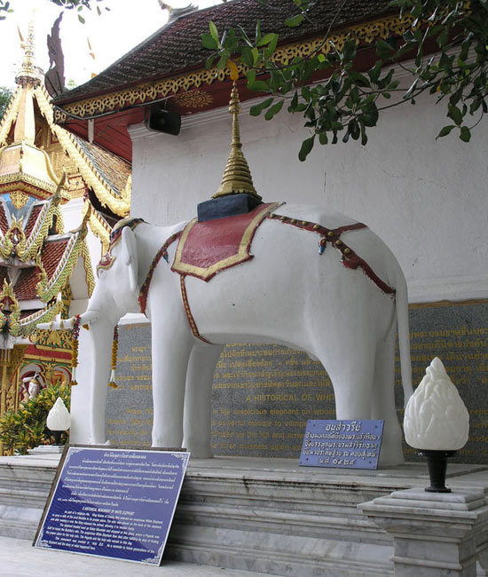 Elephant blanc de Wat Phra That Doi Suthep