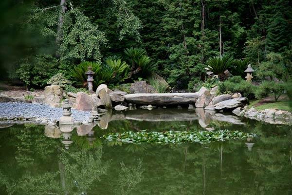 jardin japonais en images dinosoria. Black Bedroom Furniture Sets. Home Design Ideas