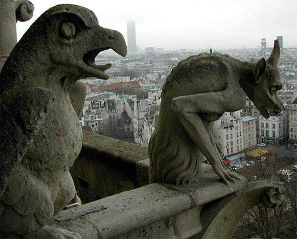 Gargouille de Notre Dame
