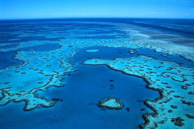 la grande barrière de corail