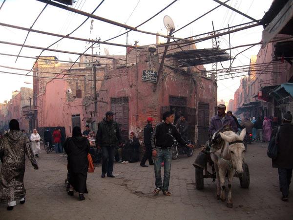Marrakech . Maroc